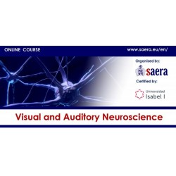 Visual and Auditory Neuroscience